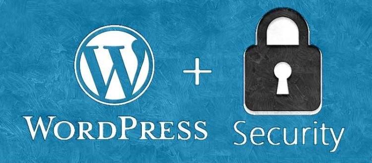 10 Ways to Secure WordPress Websites